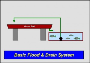 System Layout #1 –  Basic Flood & Drain