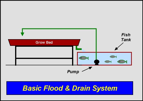 System layout 1 basic flood drain - Design basics house plans set ...