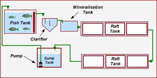 Aquaponics Vortex Filter